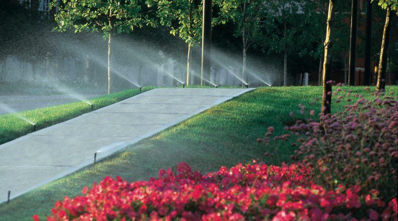 Sistemas automáticos de irrigação: tudo o que você precisa saber