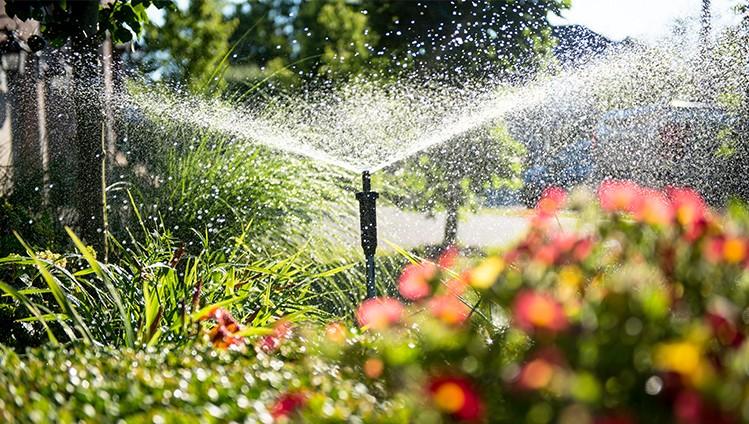 Paisagismo comercial: Vantagens de ter um jardim na sua empresa.