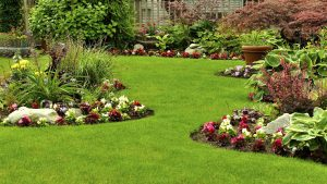 Vantagens de ter um jardim em casa